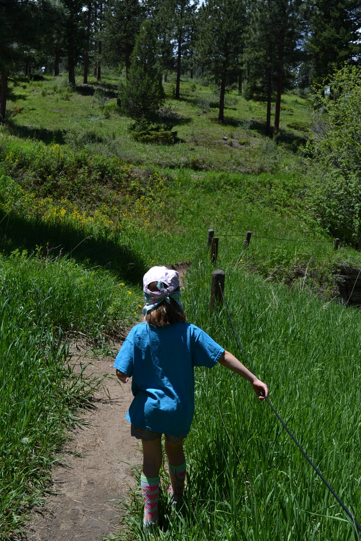 Easy Kid Hike – Exploring The Braille Trail