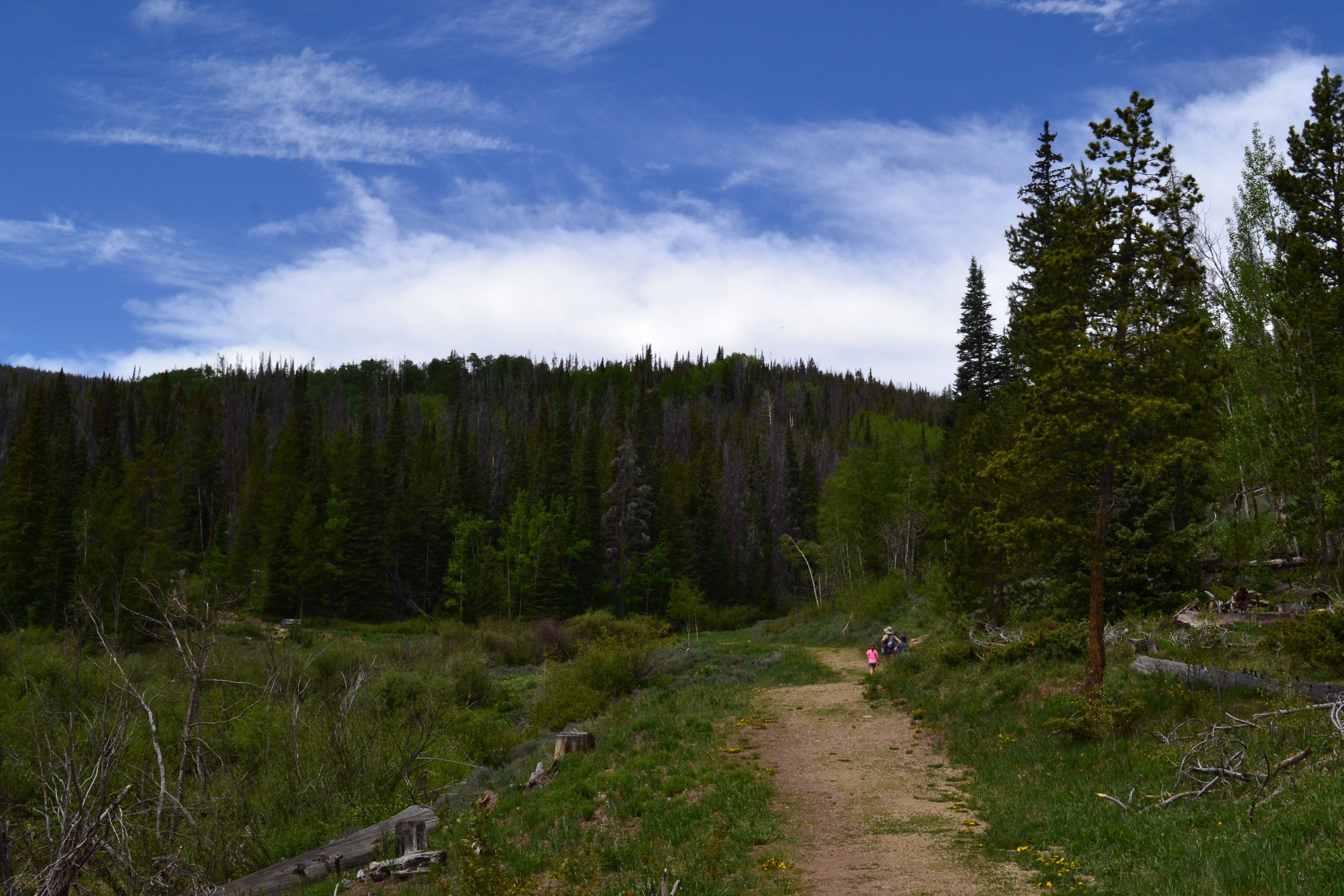 Tips for visiting the YMCA Snow Mountain Ranch